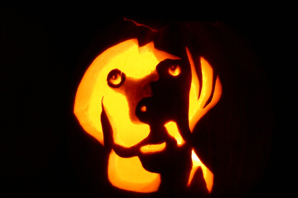 Jack O'Lantern in the Dark by abryant