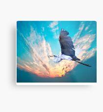 Flying High, Metal Print
