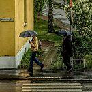 Falling Rain by Barry W  King