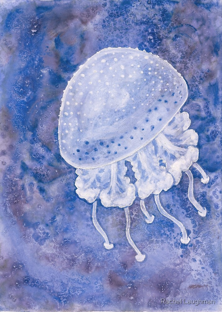 White Spotted Jellyfish by Rachel Laughman