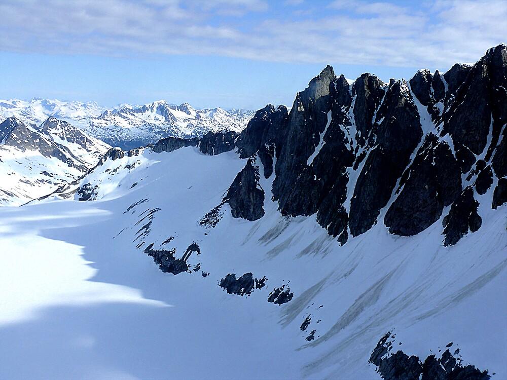 More of Spencer Glacier, Beautiful Alaska by Liz Wear