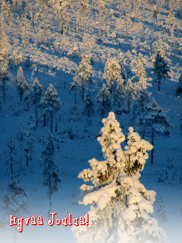 'Merry Christmas in Finnish - part I' by Petri Volanen