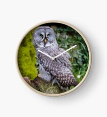 Great Grey Owl Clock