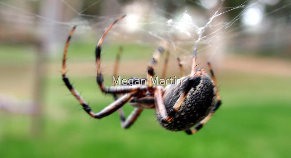 Spiderman by Megan Martin