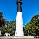 Hunting Island Lighthouse Grounds by Bob Hardy