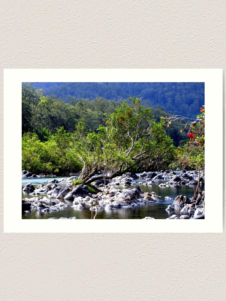 Alternate view of Nymboida River Art Print