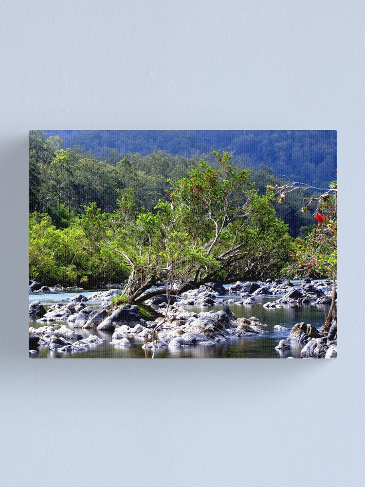 Alternate view of Nymboida River Canvas Print