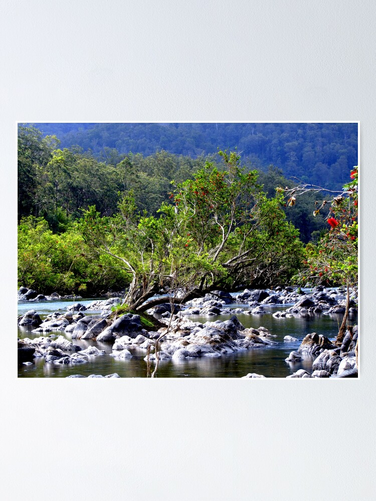 Alternate view of Nymboida River Poster