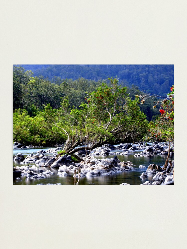 Alternate view of Nymboida River Photographic Print