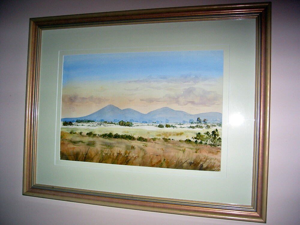 You Yangs In The Evening by rosyl