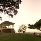 Park at sunset in panoramic view by freshalex