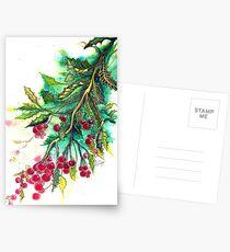 Christmas Holly Postcards