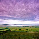 """Purple Misty Morning View"" by Bradley Shawn  Rabon"