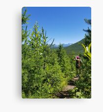 Birder in Glacier National Park - Demers Ridge Canvas Print