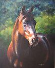 Equus Soul by Heidi Schwandt Garner