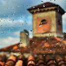 It stopped raining by Silvia Ganora