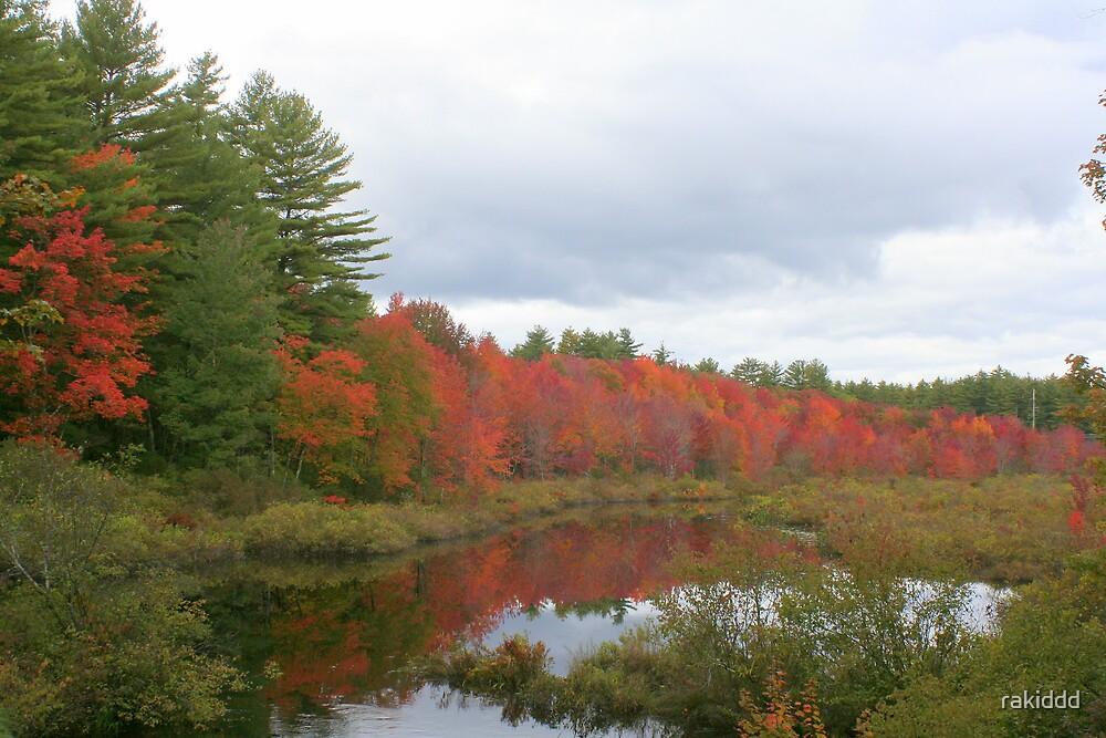 Early Fall by rakiddd