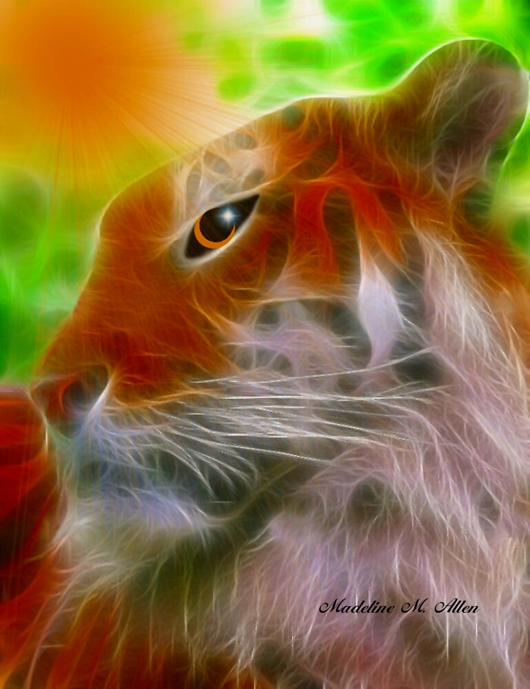 EYE OF THE TIGER by Madeline M  Allen