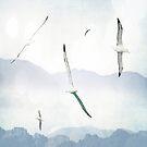 Albatross by Margi