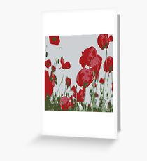 Poppy Field Of Remembrance Vector Greeting Card