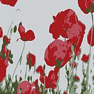Poppy Field Of Remembrance Vector by taiche