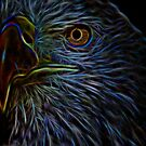 Eagle Art by TJ Baccari Photography