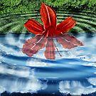 Liquid Flower VI by EbelArt