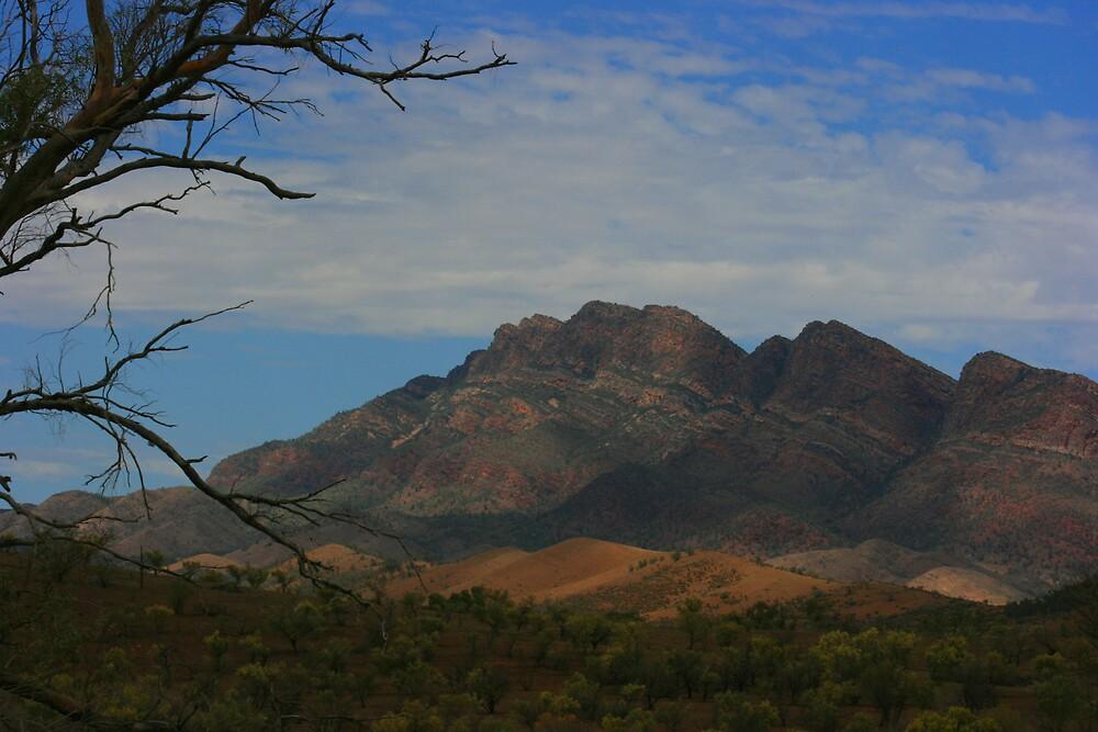Flinders Ranges, South Australia by OzShell