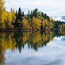 Rainy Fall Day by Jill Doyle