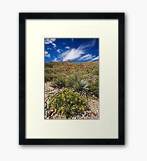 McKelligon Canyon Scenery Framed Print