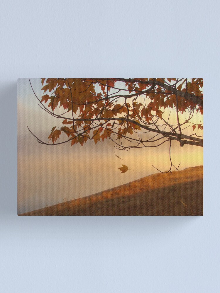 Alternate view of Spark from Heaven Canvas Print