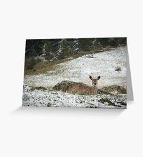 Gentle Snow Greeting Card