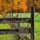 an autumn moment in the country by Kendall McKernon