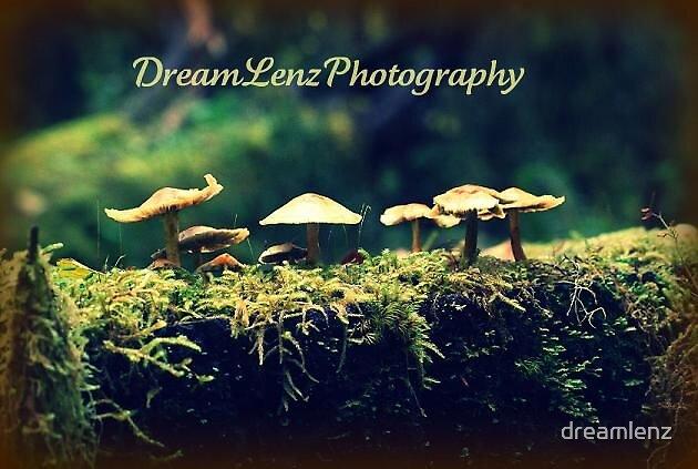 Smurf Turf by dreamlenz