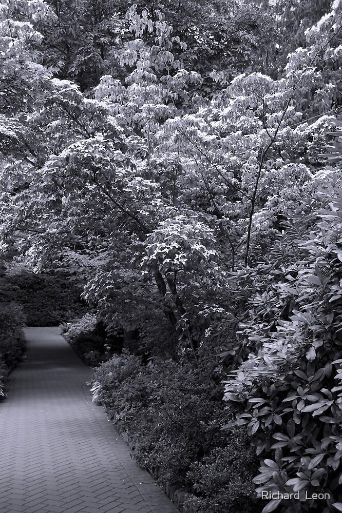 Garden Path by Richard  Leon