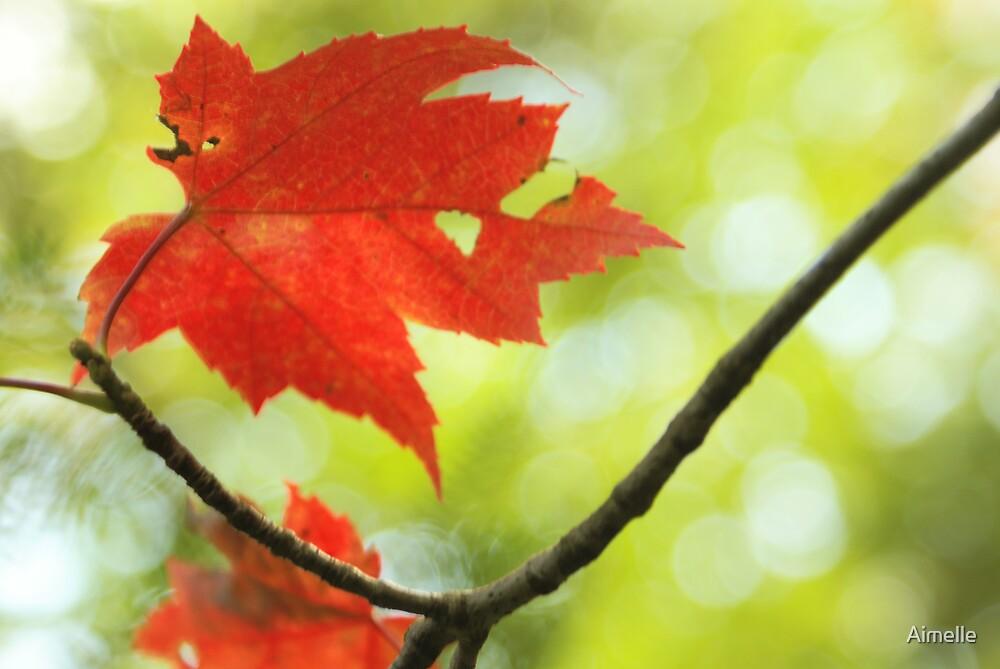 poésie d' automne by Aimelle
