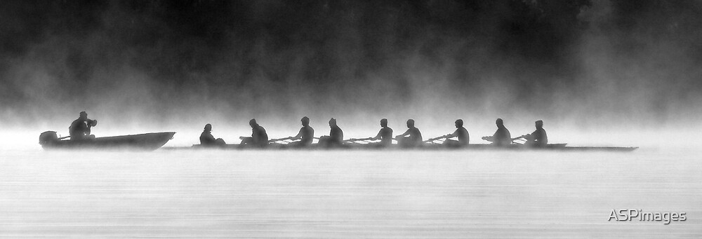 Rowing on a Misty Morning by ASPimages