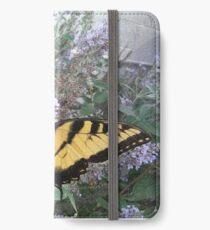 Papilio glaucus iPhone Wallet