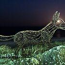 Ghost Dingo  by pablosvista2