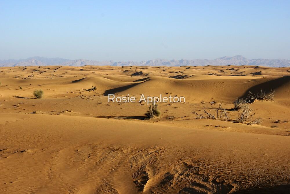 Eastern Sands by Rosie Appleton
