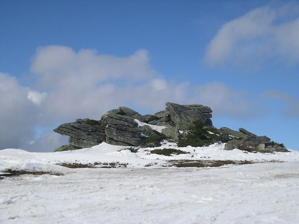 winter 1 by emilijana