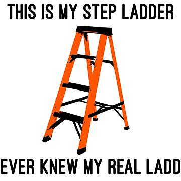 Step Ladder by StefanH13