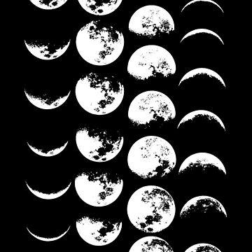 Moon Phases No. 2 by wolfandbird
