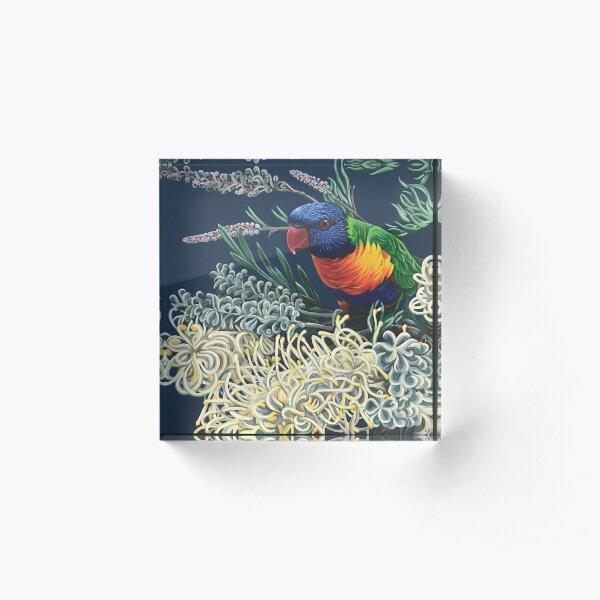 Rainbow Lorikeet and Grevillea Acrylic Block