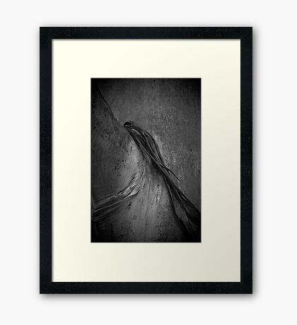 Tree Scarf Framed Print
