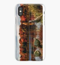 Hammond Pond iPhone Case/Skin