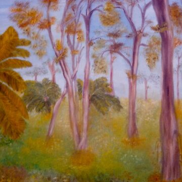 Ghost Gums  by chrisjoy