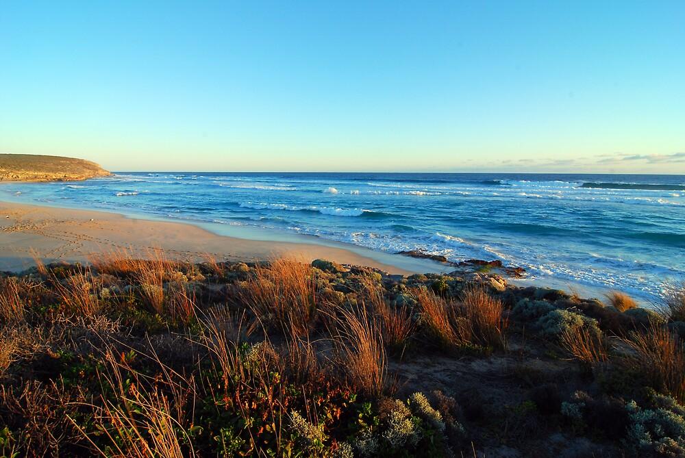 Hanson Bay beach #2 by Wayne England