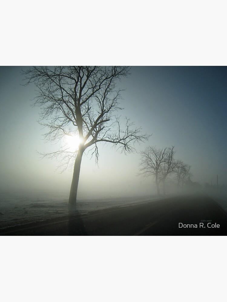 Winter Fog by alwaysdrc