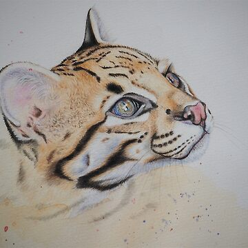 Ocelot by mbillustrations